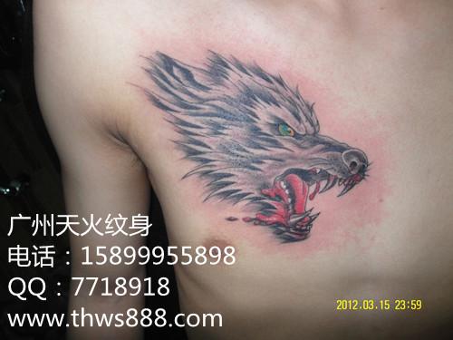 狼头纹身003 - 纹身,广州纹身